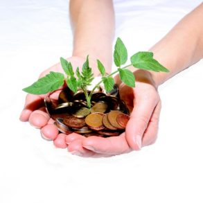 A cupped pair of hands holding a plant sprouting from a pile of coins