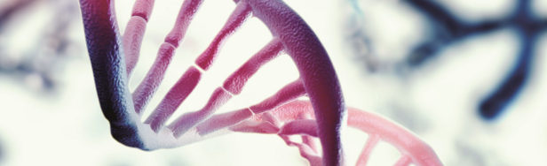 Snapshot of a DNA double helix