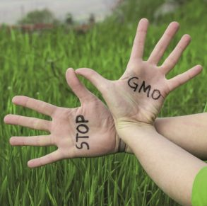 A pair of splayed hands with 'STOP GMO' written across the palms