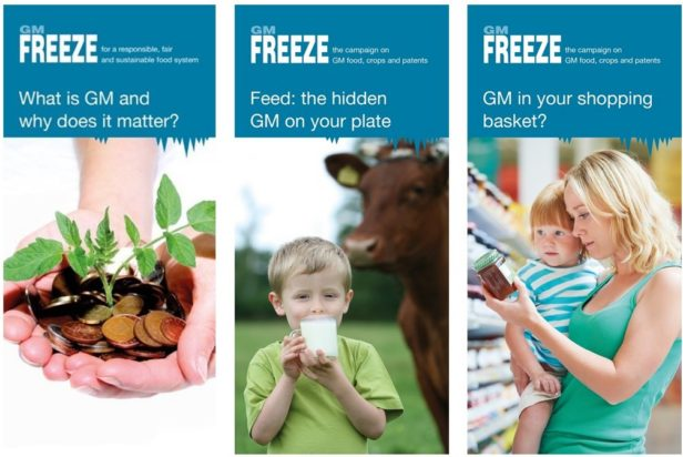Covers of three GM Freeze leaflet