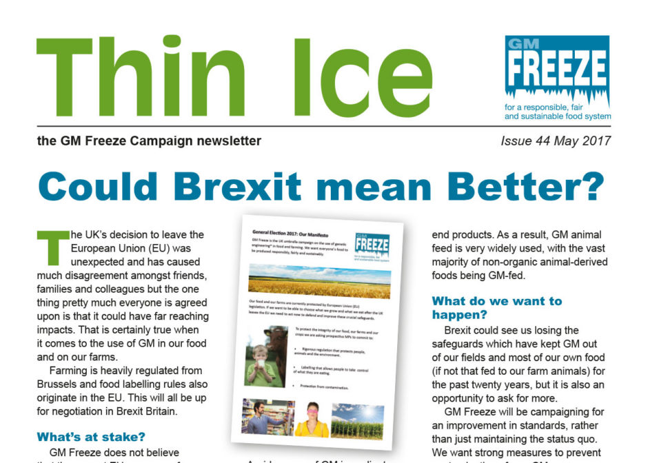 GMF Thin Ice Issue 44